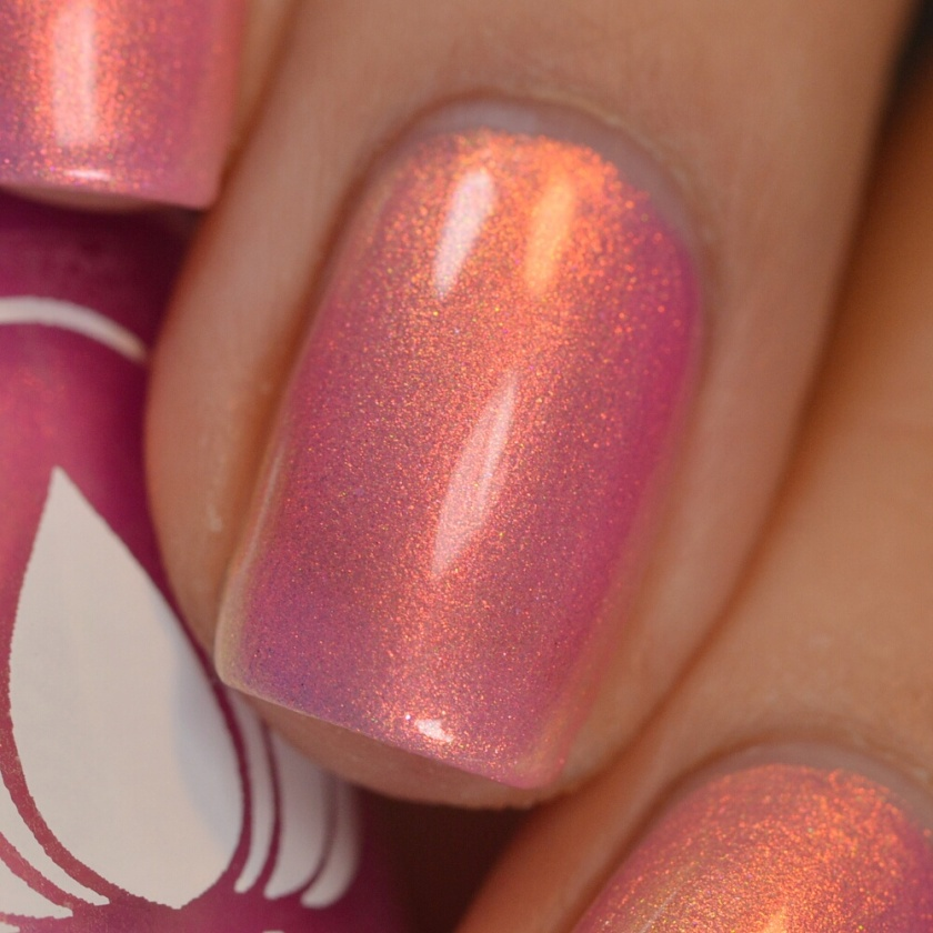 swatch ethereal shell yeah 6