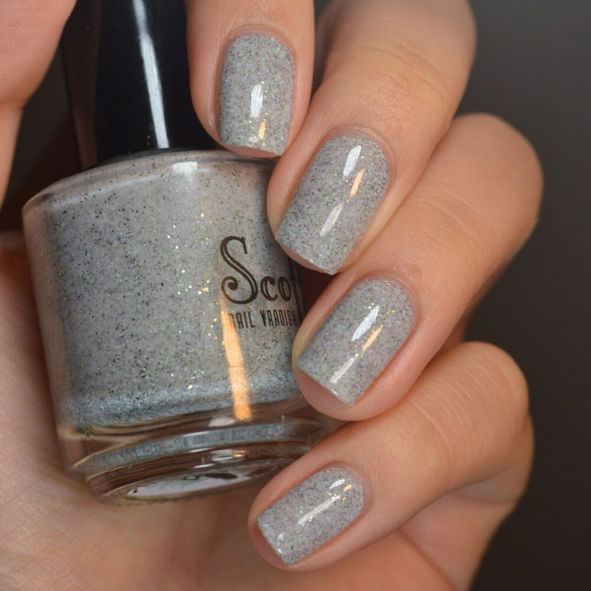 swatch scofflaw gray goose 1