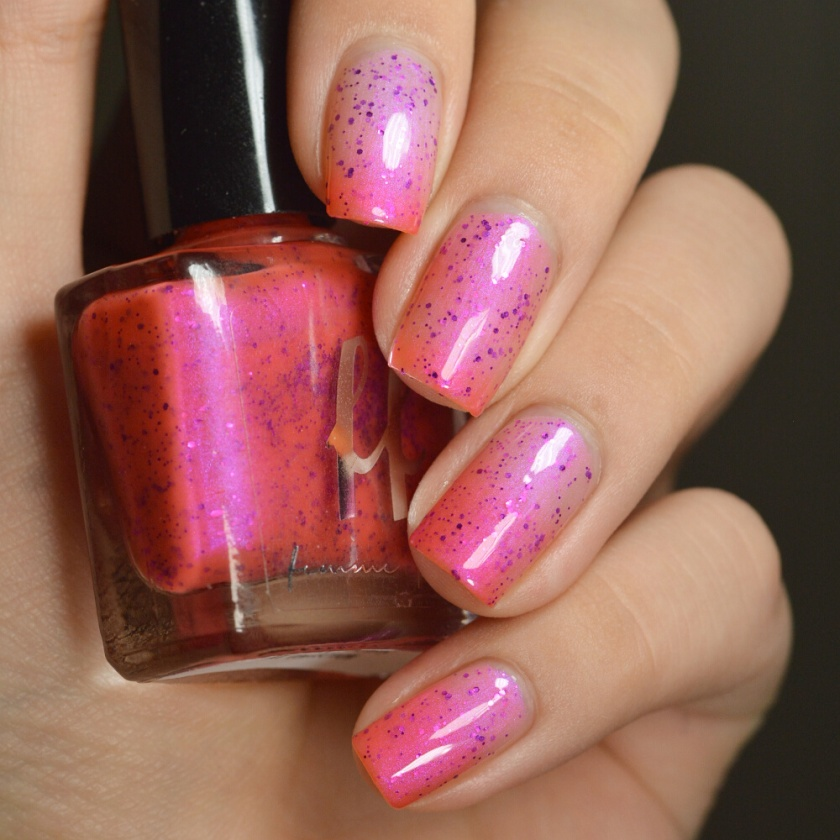 swatch ff rembrandt tulips 1