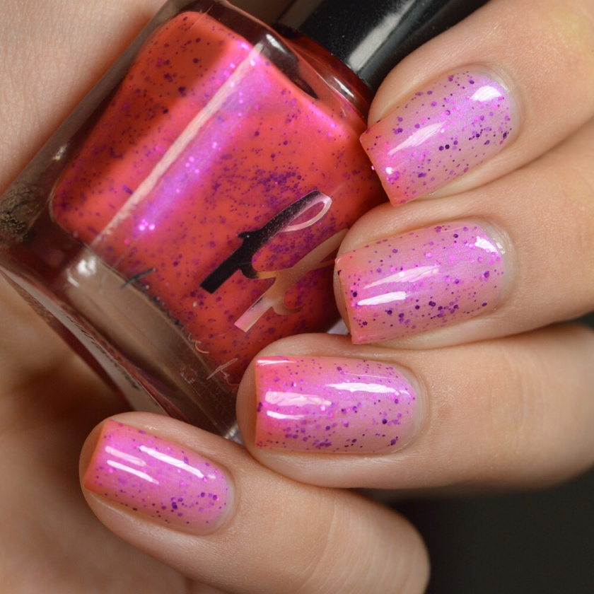 swatch ff rembrandt tulips 3