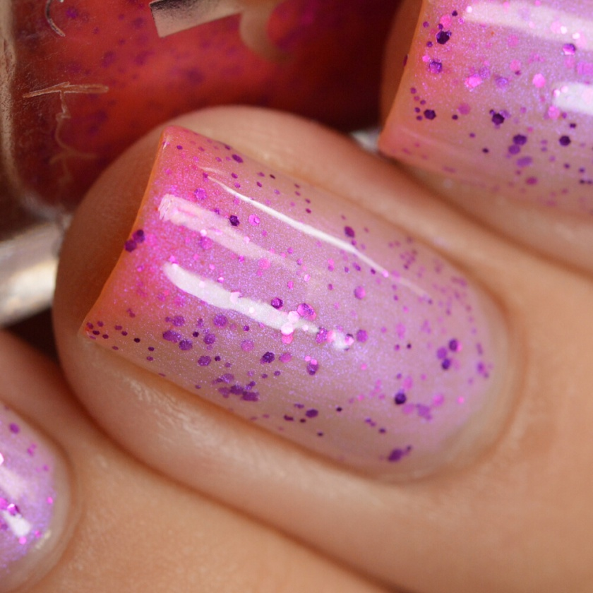 swatch ff rembrandt tulips 6